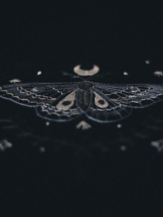 moth-tank