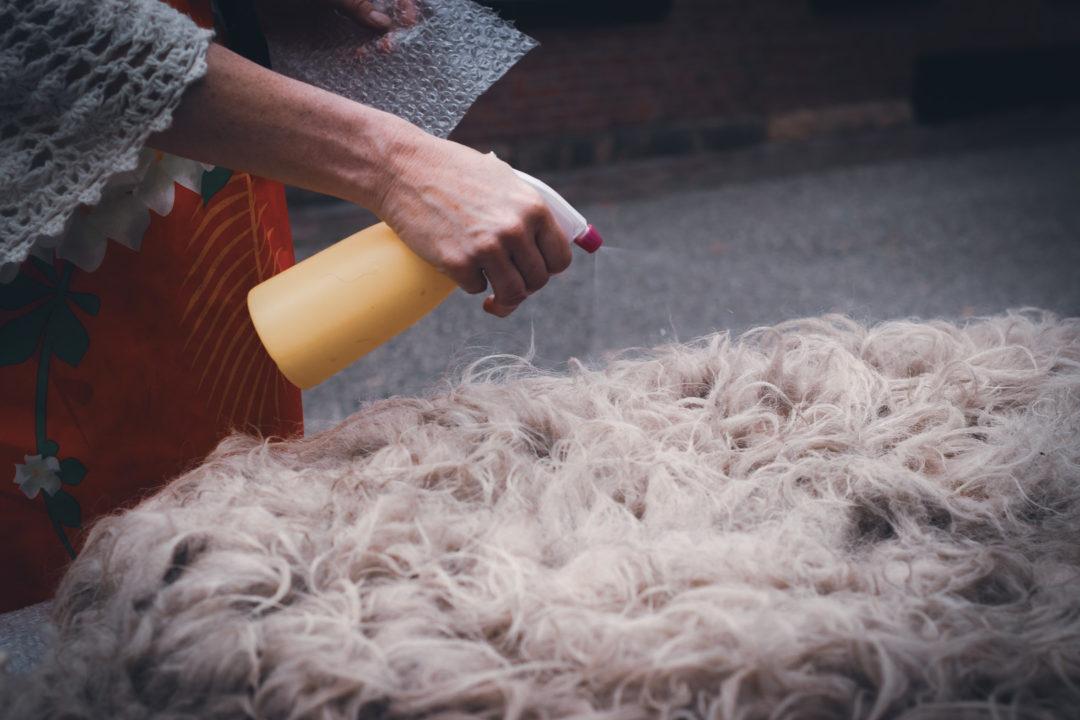 Schaffell wird mit Seifenwasser besprüht
